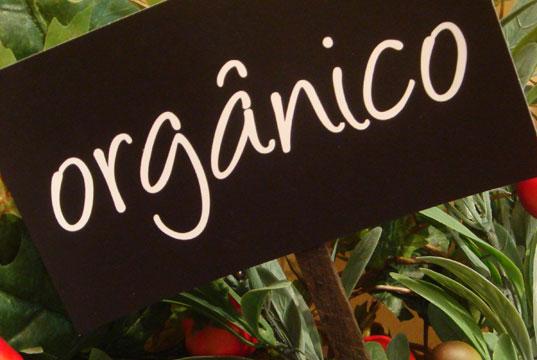 placa-de-alimentos-organicos