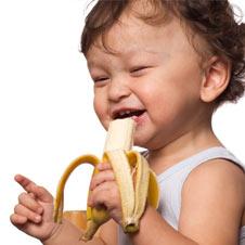 bebe-banana